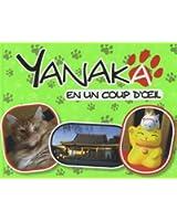 Yanaka en un coup d'oeil