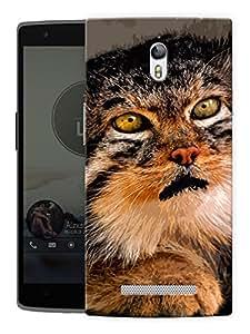 "Humor Gang Scared Cat Printed Designer Mobile Back Cover For ""Oppo R7"" (3D, Matte, Premium Quality Snap On Case)"