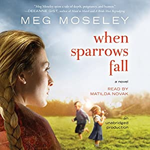 When Sparrows Fall Audiobook