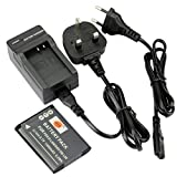 DSTE D-LI88 Rechargeable Li-ion Battery + Charger DC89U for Pentax Optio H90, P70, P80, W90, WS80 Digatal Camera