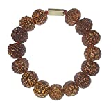 Original Seven Mukhi Rudraksha Bracelet