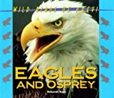 img - for Wild Birds of Prey - Eagles & Osprey book / textbook / text book