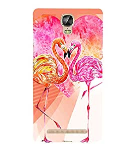 PrintVisa Love Hearts Colorful Birds 3D Hard Polycarbonate Designer Back Case Cover for Gionee Marathon M5 Plus