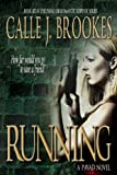 Running (PAVAD: FBI Romantic Suspense)