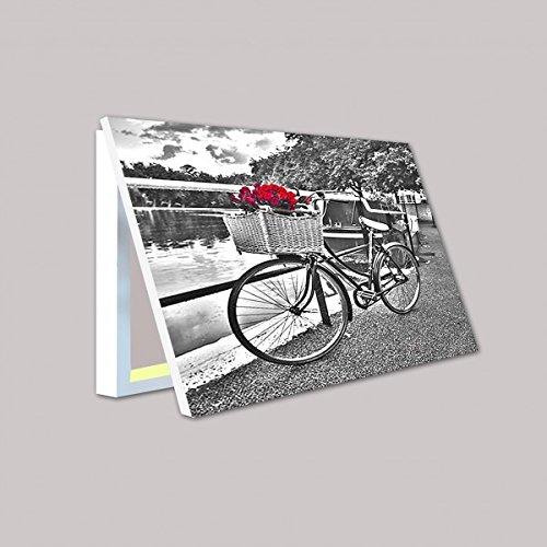 molduras-y-cuadros-garcia-cubrecontador-bicicleta-con-rosas-rojas-dv-ig5623-madera-color-plata-taman