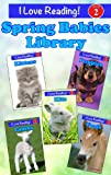 Leveled Reader Set:  Spring Babies Library (A Set of 5 Baby Animals Level Two Readers) (I Love Reading Book 2)