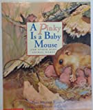 img - for A Pinky Is a Baby Mouse book / textbook / text book