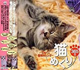 猫めくり365日/日めくり壁紙カレンダー My Dear Cats 365 Days