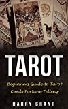 Tarot: Beginners Guide to Tarot Cards Fortune Telling (Fortune Telling, Tarot Reading, Arcana, Beginners Guide) (English Edition)