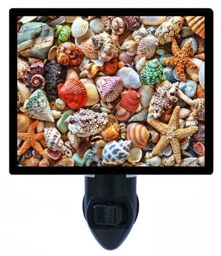 Night Light - Shells - Colorful Seashells Led Night Light front-1047943