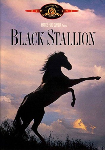 Black Stallion [IT Import]Black Stallion [IT Import]