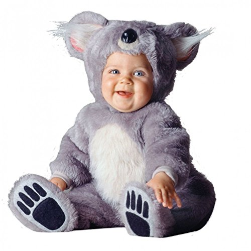 Tom Arma Koala Bear Signature Limited Edition Baby Costume - (Infant 6-12 Months)