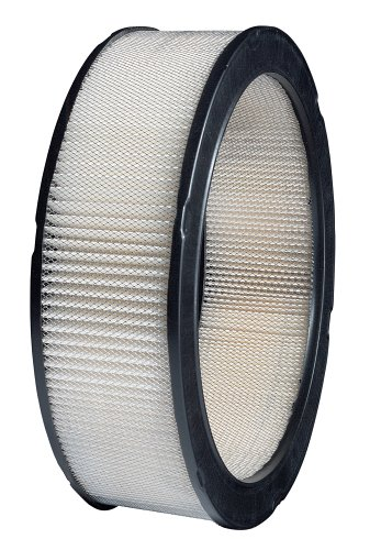 Purolator A30045 Classic Air Filter
