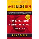 While Europe Sleptby Bruce Bawer