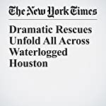 Dramatic Rescues Unfold All Across Waterlogged Houston   Alan Blinder