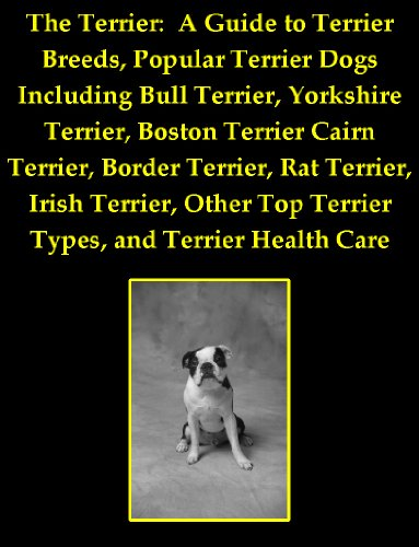 The Terrier: A Guide to Terrier Breeds, Popular Terrier Dogs Including Bull Terrier, Yorkshire Terrier, Boston Terrier Cairn Terrier, Border Terrier, Rat ... Top Terrier Types, and Terrier Health Care