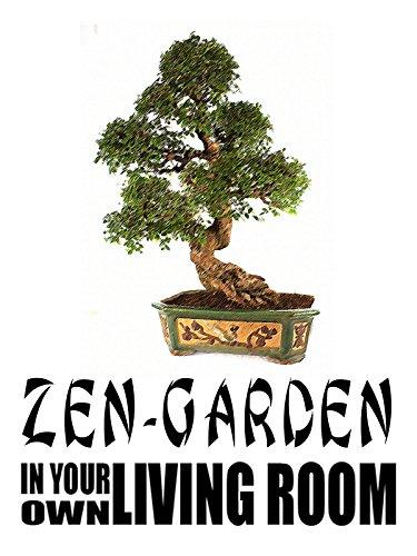 Zen Garden In Your Own Living Room