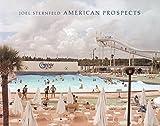 Joel Sternfeld: American Prospects (1935202979) by Brougher, Kerry
