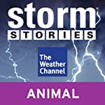 Storm Stories: Weather Dog |
