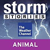Storm Stories: Weather Dog | [The Weather Channel]