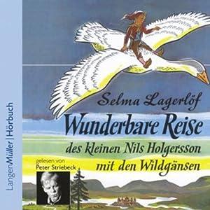 Wunderbare Reise des kleinen Nils Holgersson mit den Wildgänsen Hörbuch