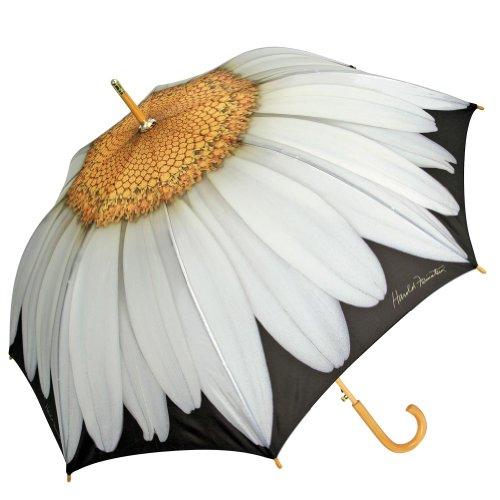 Harold Feinstein White Daisy Cane Auto Open Umbrella, Multi-Colored, One Size