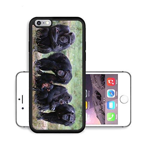 Luxlady Premium Apple iPhone 6 Plus iPhone 6S Plus Aluminium Snap Case When Monkey s Go Bad IMAGE ID 221188
