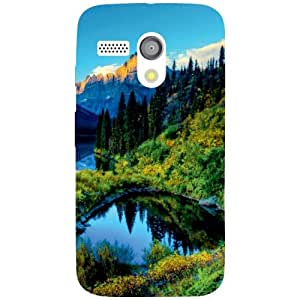 Via flowers Back Cover For Motorolla Moto G Scenic Multi Color