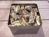 お歳暮期間限定販売 三重鳥羽浦村 簡単焼き牡蠣 お徳用詰合せ 約2kg