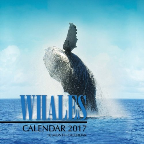 Whales Calendar 2017: 16 Month Calendar