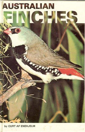 Australian Finches
