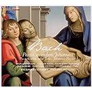 J.S. Bach: St John Passion (Ricercar Consort/Pierlot)