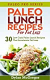 img - for Paleo Lunch Recipes For Fat Loss: Your Complete Guide to Understanding Paleo With 30 Lunch Time Recipes to Keep You Going Through the Day (Paleo Pro Series) book / textbook / text book
