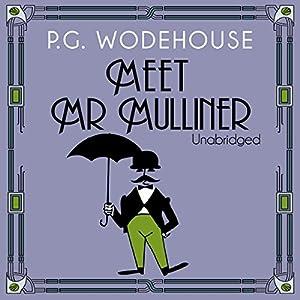 Meet Mr Mulliner Audiobook