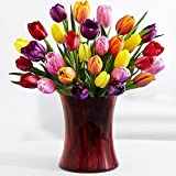 30 Multi-Colored Valentine's Tulips (with FREE glass vase) - Flowers - Great for Valentine's Day