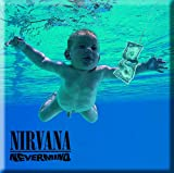 Nirvana Nevermind Album Cover Floating Baby Fridge Magnet