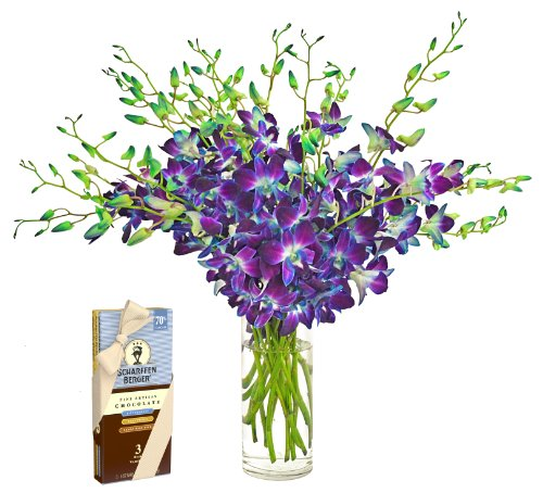 Blue Orchid Bouquet (20 Stems) And Scharffen Berger Chocolate - With Vase