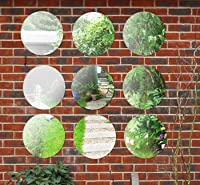 1ft 3in Set of 9 Circular Acrylic Garden Mirrors from primrose.co.uk