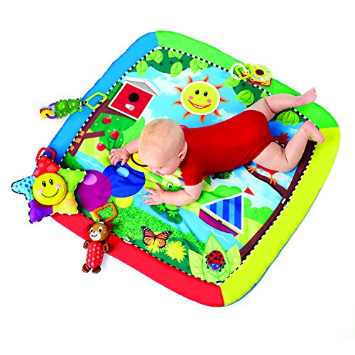 Baby Floor Toys : Baby einstein caterpillar friends play gym mat