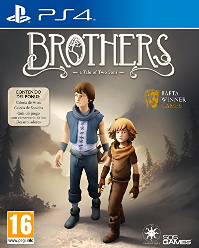 brothers-a-tale-of-two-sons