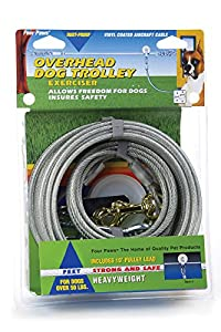 Four Paws Silver Heavy Weight 50 Foot Dog Trolley Exerciser