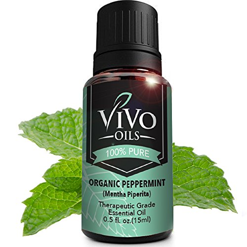 USDA Certified Organic Peppermint Oil - USDA Logo on the Label - Best and Highest Quality Naturally Powerful Essential Oil on Headaches Migraines - Repels Spiders - Larger 15ml Bottle - Origin: India