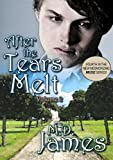 After the Tears Melt - Vol. 2 (Muse Book 4)