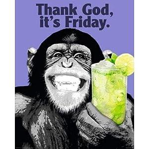 Amazon.com: (16x20) The Chimp Friday TGIF Funny Poster