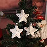 Decorative Buckets:SET OF 6 WHITE CHRISTMAS STARS :CHRISTMAS TREE DECORATION HANGING: WHITE CHRISTMAS TREE DECORATIONS...