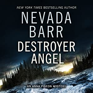 Destroyer Angel Audiobook