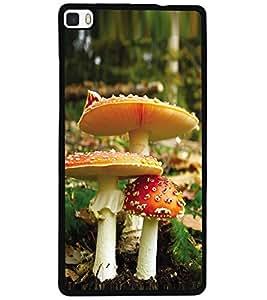 ColourCraft Beautiful Mushrooms Design Back Case Cover for HUAWEI P8
