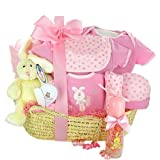 Newborn Baby Bassinet Baby Girl Gift Basket