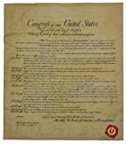 The Bill of Rights, Authentic Replica Printed on Antiqued Genuine Parchment. 14 X 16