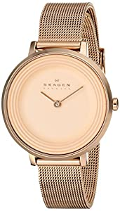 Skagen Women's SKW2213 Ditte Quartz 2 Hand Stainless Steel Rose Gold Watch